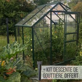 Serre en verre trempé 3 mm ALLIUM 2,50 m² - Verte