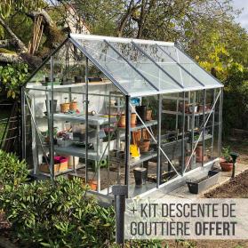 Serre de jardin en verre trempé et structure aluminium - Lams ALLIUM 4,90 m²