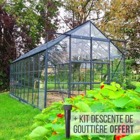 Serre en verre trempé 3 mm LAURUS 12,90 m² - Verte